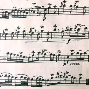 kleines Notenbeispiel aus Rossignol en amour